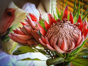 Decorative Protea in Room 3