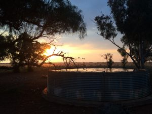 Vlak Dam at SUNSET Private Reserve